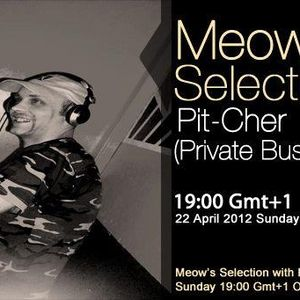 Pit-Cher guestmix to 28Meow's Selection 22.04.2012.