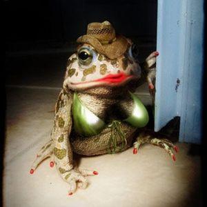 Trey Turner - The Toad's Mistress