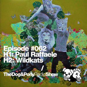 The Dog & Pony Radio Show #062: Guest Wildkats