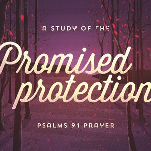 Promised Protection II