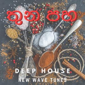 THUNA PAHA - Deep House ( New Wave Tunes mix by Vihanga )
