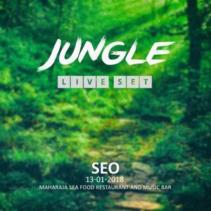 SEOZYKLO - JUNGLE LIVE SET - 2018-01-13