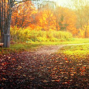 #AutumnFeelings vol.2