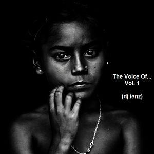 The Voice Of...Vol. 1 (dj ienz)
