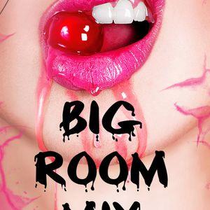 Big Room Mix 105