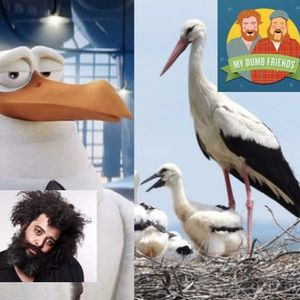 Episode #156: Guest Chris Cubas, also Cucumbers, Storks & Stairs