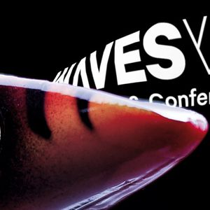 Waves Vienna Music Festival & Conference: Enter the Polish Market