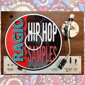 SHOW#10 : ALL ABOUT THE SAMPLES // HIP HOP EDITION