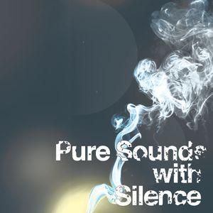 Silence - Pure Sounds v24