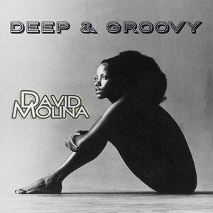 David Molina - Deep & Groovy Mix  29/10/2013
