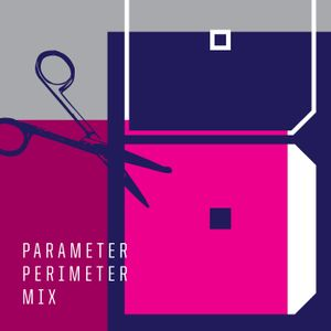 PARAMETER PERIMETER MIX