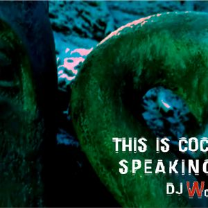Dj WowWeek-Winter Essential (This is cocaine speaking!!! may 2011)