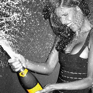 Bitches Poppin' Champagne Over Some Rich Dude's Pool miniset