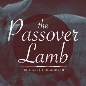 The Passover Lamb pt 4