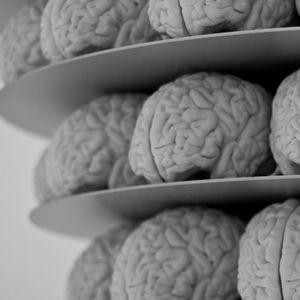 131 - I Like Big Brains And I Can Not Lie