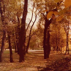 Radio Juicy Vol.29 (Autumn Vibes by fLOwTEC)