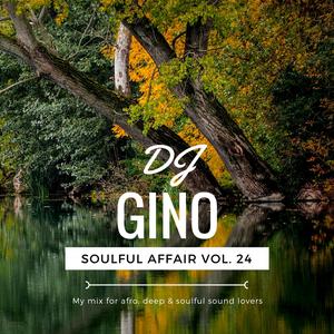 Soulful Affair Vol. 24