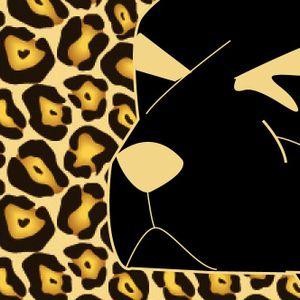Perro Ki // YUCA style // Bs As - ARG