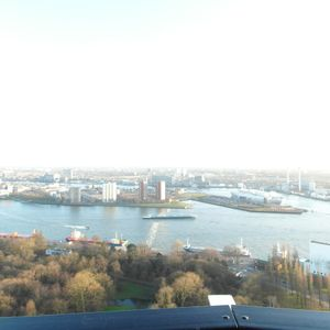 Retourtje Rotterdam, Wakkere Honden, uur 1 160114
