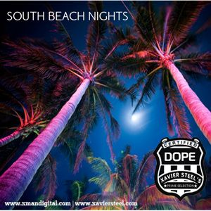 South Beach Nights 2010 [The Prime Selection]