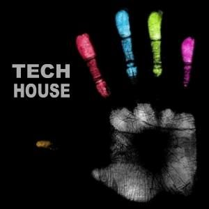 Dj Pierre - Demo Mix Tech House For Festival Electronic Quilpue 2012