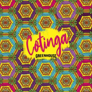 Cotinga: Pool side island vibes [Chill / Poolside / Tropical House / Balearic / Rainforest]