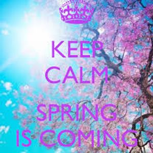 Bezh Spring 2014 Edition - Ed Alexandre Mix