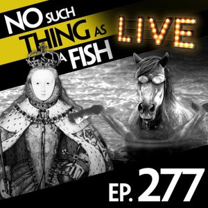 Episode 277: No Such Thing As An Elephant Polo Rider In A Sombrero