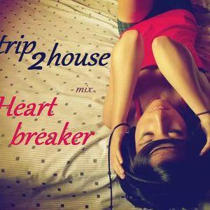 trip2house - Heartbreaker
