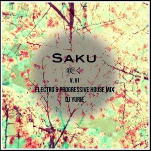 Saku V.IV (Electro & Progressive House Mix)