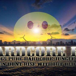 hardcore fm 1st feb 2016 dj SpideyMan's jump up show