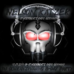 Nelson Katzer - DJ Schranzwahns B-day Party 09.09.20011 @ Sthoerbeatz Radio Germany