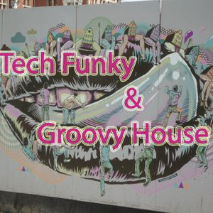 Willy Gator Tech Funky & Groovy House