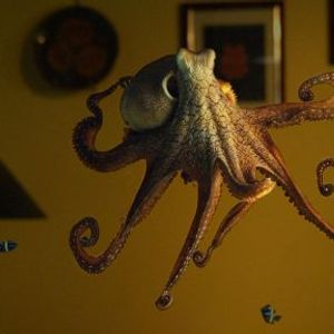sewersounds-10_23_19_octopus_dreaming