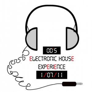 OD´s ElectronicHouseExperience 1/07/11