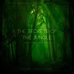 THE SECRETS OF THE JUNGLE - BBOYING MIXTAPE - 2014