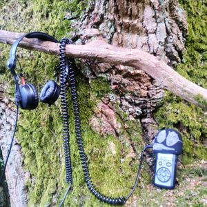Chilled Music Therapy S18 - Sound of Nature - Ashridge Forest Ambient Walk