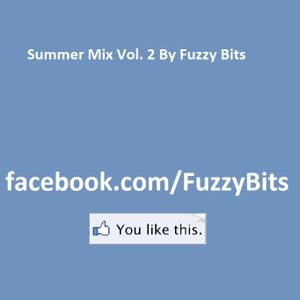 Fuzzy Bits - Summer Mix Vol. 2