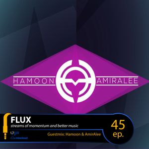 FLUX 45 // ِDynamically Ignoring the Hegemony of Weekends #3