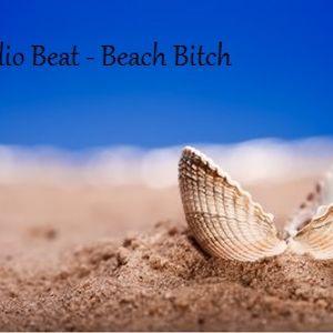 Audio Beat-Beach Bitch