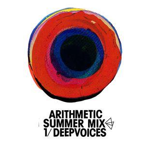 Arithmetic Summer Mix - Deepvoices