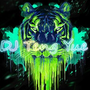 20170401  DJ Teng Yue (Vietnamese Drums)(飘然欲仙.美妙旋律)Remix