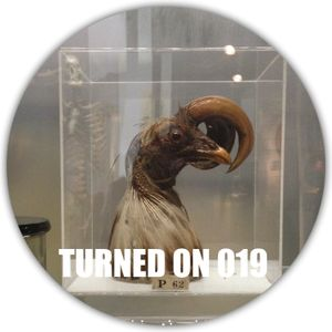 Turned On 019: Claude VonStroke, Maya Jane Coles, SImian Mobile Disco, Disclosure