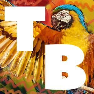 Tropical Beats Radio Show Nov '19 Feat. Uproot Andy, Afriquoi, Systema Solar, Wara, Poirier, iZem