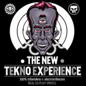 kT theDestroyer - Open Your Mind - theNewTeknoExperience CD - SDF-KT23 ElectroCore/TribeCore DJset