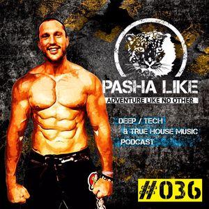 #036 Deep, Tech & True House Music Podcast by Pasha Like