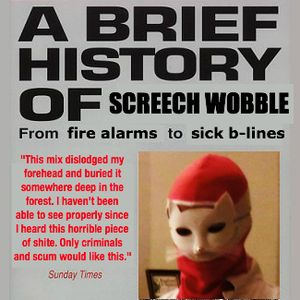 A BRIEF HISTORY OF SCREECH WOBBLE 2008–2014