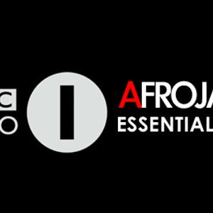 Afrojack BBC Essential Mix - 10/7/2010 - pt2