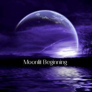 003 - Moonlit Beginning