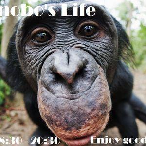 [Podcast] 48FM - A Bonobo's Life S11 Ep 08 - A l'aise Blaise